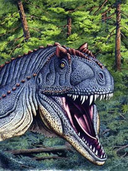 Dinosauri storia curiosit immagini e tanto altro for Nomi di rettili