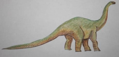 Dinosauri carnivori e erbivori nomi e schede for Nomi dei gemelli diversi