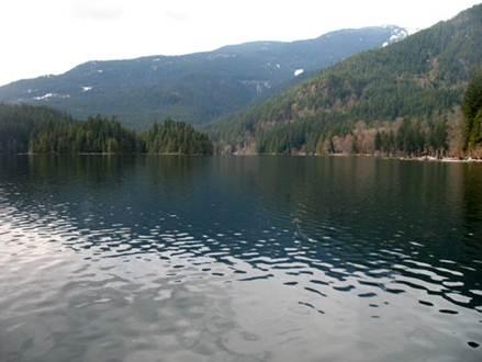 Tipi di laghi for Disegni di laghi