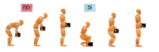 Ginnastica per il mal di schiena lombare